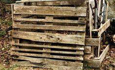 """Igelquartier im Garten -  In einem naturnahen Garten sind Igel gern gesehene Gäste und auch in der Stadt tummeln sie sich unter Hecken (daher der englische Name """"hedgehog"""") und in Parks und Gärten. Der fleißige Ungeziefervertilger sucht auf seinen kilometerlangen Futtertouren in der Dämmerung nach Schnecken, Engerlingen, Würmern, Raupen und Käfern und hilft so, den Garten gesund zu halten."""