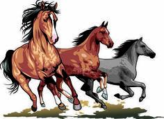 Vahşi atlar — Stok İllüstrasyon #37100761