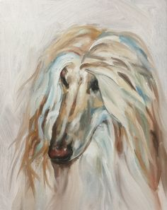 Afghan by Julie Brunn #dog #afghanhound