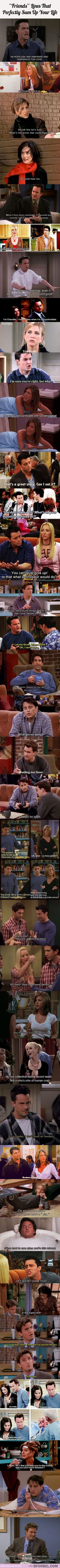 "30 ""Friends"" Lines That Perfectly Sum Up Your Life… 
