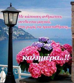 Happy Day, Outdoor Decor, Spiritual, Home Decor, Wallpapers, Ideas, Decoration Home, Room Decor, Wallpaper