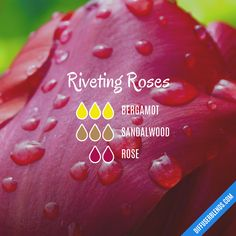 Essential Oil Perfume, Doterra Essential Oils, Perfume Recipes, Oil Mix, Diffuser Recipes, Essential Oil Diffuser Blends, Rose Oil, Fractionated Coconut Oil, Cleaning Recipes