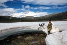 A conexão da tribo nômade mongol Dukha com a Natureza permite que eles se sintam em casa em meio à Natureza e mantenham sua cultura, apesar da crescente influência do mundo exterior.  Fotografia: Hamid Sardar-Afkhami.