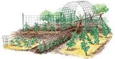 Vertical Gardening Techniques for Maximum Returns - Organic Gardening - MOTHER EARTH NEWS