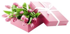 Box with Pink Tulips PNG Transparent Picture