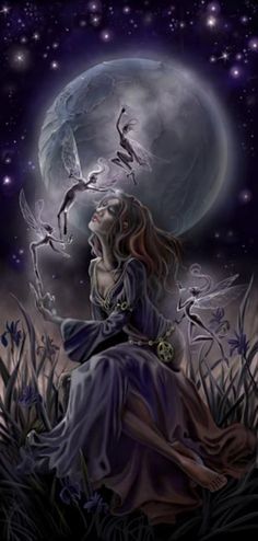 Midnight Iris by Stephanie Pui-Mun Law