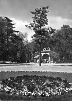 Durante la seconda metà dell'800 nei Giardini Pubblici di Porta Venezia iniziarono a comparire gabbie con animali esotici e voliere per ...