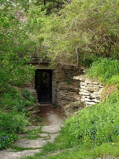 Ever wanted to build you own root cellar? But you didn't have any root cellar plans or didn't know what type of root cellar you should build? Here are some root cellar ideas and step by step plans so you can build one in no time. Root Cellar Plans, Underground Homes, Earth Homes, Survival Shelter, Survival Skills, Bushcraft, Michigan, Backyard, Exterior