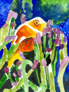 Among the Reef