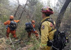 Hotshot Crew Cutting Line | Department of Corrections hand crew cutting a containment line ...