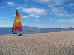 #Baja Bliss