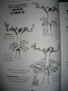 treehouse ideas....