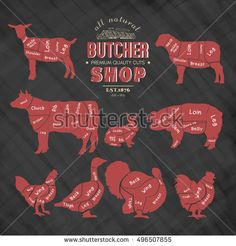 Diagrams for butcher shop. Farm animals silhouette. Cow, rabbit, sheep, pig, goat, goose, duck, turkey, chalkboard meat vector illustration