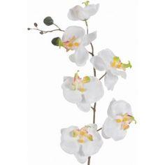 Orchidée phalaenopsis ivoire blanc artificielle en tissu sur tige 70 cm, hampe composée de 6 fleurs d'orchidée ivoire blanc 8 cm, deco mariage, deco baptême, deco florale.