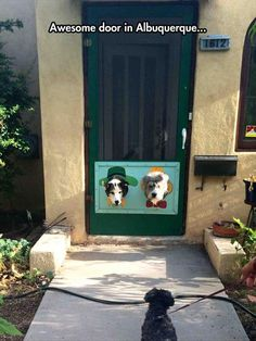 Hats Off (or should I say ON) for this doggie door designer - Dump A Day Funny Pictures Of The Day - 86 Pics
