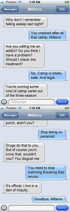 Texts from Mittens--Breaking Bad edition