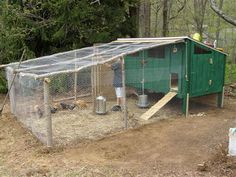 Raising Chickens | Keeping Chickens | Self Sufficient Living