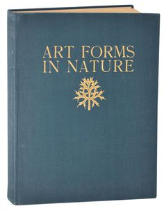 'Art Forms In Nature' (Examples From The Plant World Photographed From Nature) by Karl Blossfeldt