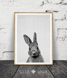 Hey, I found this really awesome Etsy listing at https://www.etsy.com/listing/249947446/rabbit-bunny-print-woodlands-decor