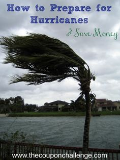 Learn tips to help prepare for Hurricanes.  Plus ways to save money in the process.
