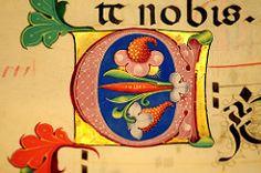 Museo Baroffio, Varese, Italy (renzodionigi) Tags: miniature illuminazioni codici manoscritti capolettera antifonario