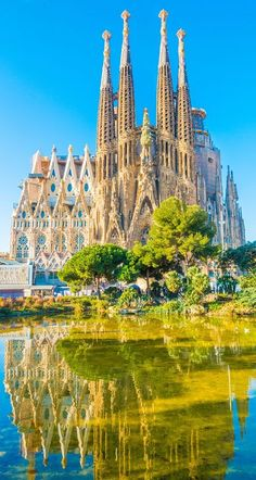 Could Barcelona get any more beautiful? devourbarcelonafoodtours.com