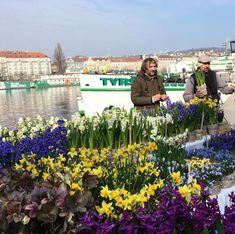 Farmářské trhy v Praze opravdu stojí za návštěvu! Kde to za to stojí a co tam koupíte najdete tady. Tam musíte jít a vyzkoušet. Dolores Park, Travel, Viajes, Destinations, Traveling, Trips