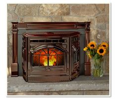 Fireplaces and Fireplace Inserts