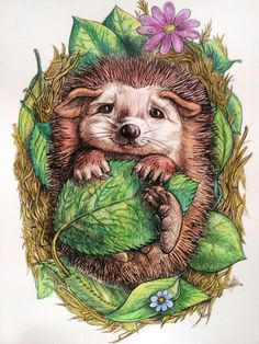 Pencil Drawings Of Animals, Cute Drawings, Colouring Pages, Coloring, Sewing Art, Cute Characters, Art Techniques, Rock Art, Cute Art