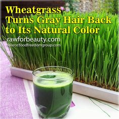 Wheatgrass turns gray hair back to its natural colour