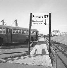 The Expobus