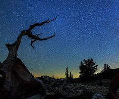 The three-minute film called Ascendance features ancient trees, lightning, rainbows, meteors, the Milky Way, and lots of stars during the meteor shower in August.