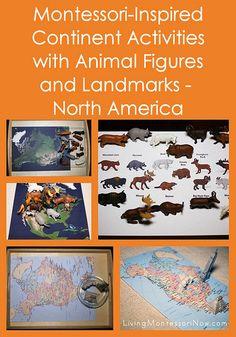 Montessori-inspired activities for a North America continent box - using Safari Ltd. animal figures and landmarks
