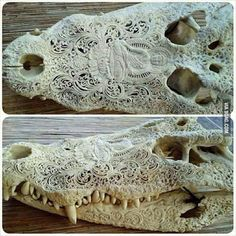 Awesome Carved Alligator Skull...I hope they didn't kill it just for this!