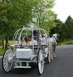 Wedding in Woodbury, Long Island, New York with Cinderella Carriage and 2 white horses