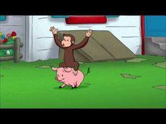 Nocturnal, Diurnal | PBS KIDS