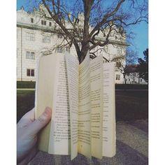 Listování #book #literature #fiction #fictionworld #fantasy #nature #tree #castle #bluesky #sunny #litomysl #walk #lovereading