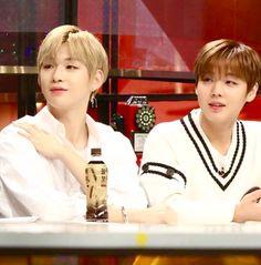 Wanna-One - Daniel and Jihoon Keeping Healthy, Yolo, My Boyfriend, It Hurts, Daisy, Korea, My Favorite Things, Guys, Couples