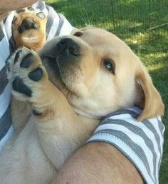 I love it when you hold me!
