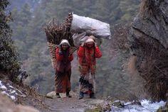 Namche Baazar , Khumbu Valley, Dziewczyny z chrustem, NEPAL