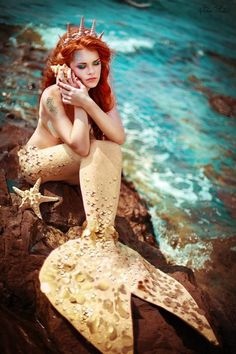 Ariel-ish Mermaid with sea shell and star fish. Mermaid Photo Shoot, Mermaid Pose, Mermaid Fairy, Mermaid Pictures, Fantasy Mermaids, Mermaids And Mermen, Peacock Pictures, Silicone Mermaid Tails, Mermaid Drawings