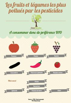 Les fruits et légumes les plus pollués par les pesticides.
