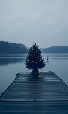 Holiday tree on a dock.                                                                                                                                                                                 More