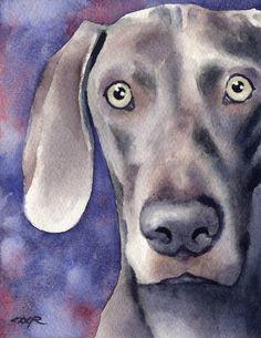 WEIMARANER Dog Art Print Signed by Artist DJ Rogers. $12.50, via Etsy.