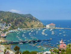 Things to do in Los Angeles - Top Dozen Sights - chilling on catalina island