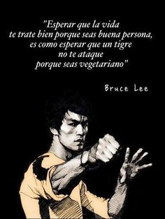 Positive Phrases, Motivational Phrases, Positive Quotes, Inspirational Quotes, Bruce Lee Frases, Bruce Lee Quotes, Just In Case, Just For You, Spanish Quotes