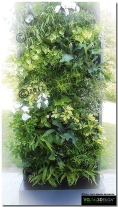 mur vgtal intrieur pot plante mur vegetal plante interieur serre toits