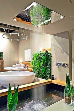 When you embellish interior spaces with houseplants, you're not just adding greenery. These living organisms interact with your body, mind and home in ways that enhance the quality of life. Some Benefits of Indoor Green Walls: breathing easier, releasing water, purifying air and improving health.