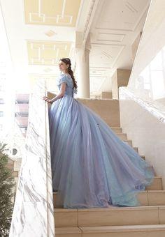 シンデレラドレス、ブルーカラードレス