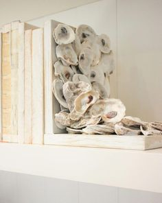 DIY Oyster Shell Bookends: Add some coastal charm to your book shelves. DIY Oyster Shell Bookends: Add some coastal Diy Craft Projects, Decor Crafts, Diy Home Decor, Shabby Chic Pink, Seashell Crafts, Beach Crafts, Oyster Shell Crafts, Oyster Shells, Oyster Diy
